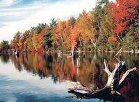 157_Boardman_River_in_Fall